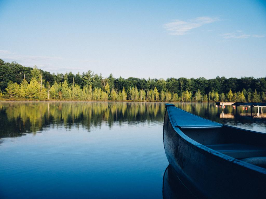 Image of grey canoe on calm body of water near tall trees at daytime